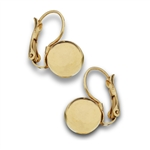 Stainless Steel Gold IP Sphere Hook Earring